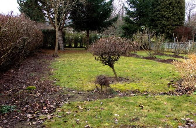 Garten im Winter in einem nordburgenländischen Dorf