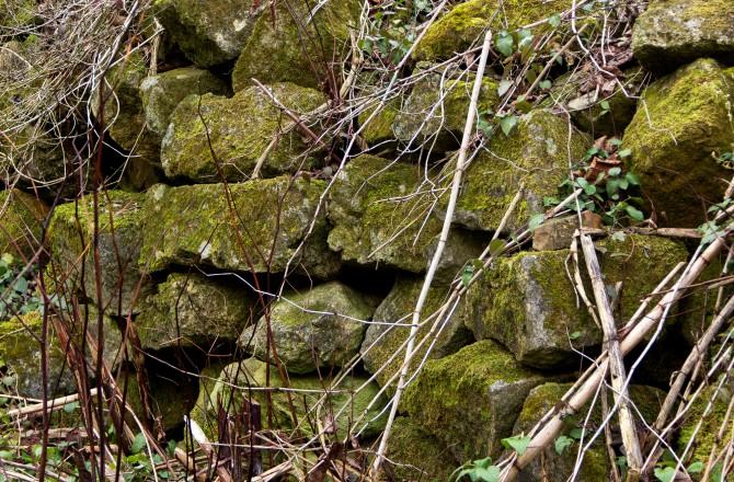 Mauer im sogenannten verschwundenen Dorf bei St. Georgen nahe Eisenstadt