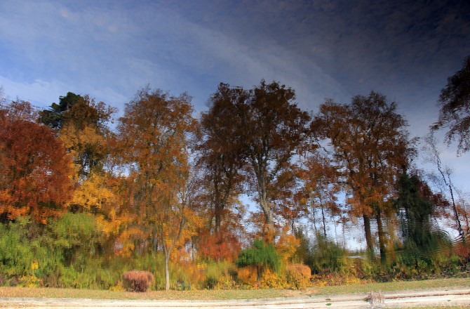 Im Schlosspark zu Eisenstadt (beim Obeliskteich) - Spiegelbild im Wasser, um 180 Grad gedreht