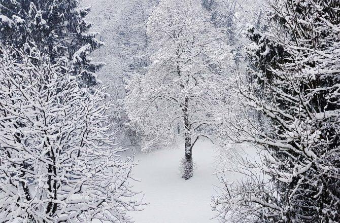 Wintereinbruch in Salzburg, 10. Februar 2018