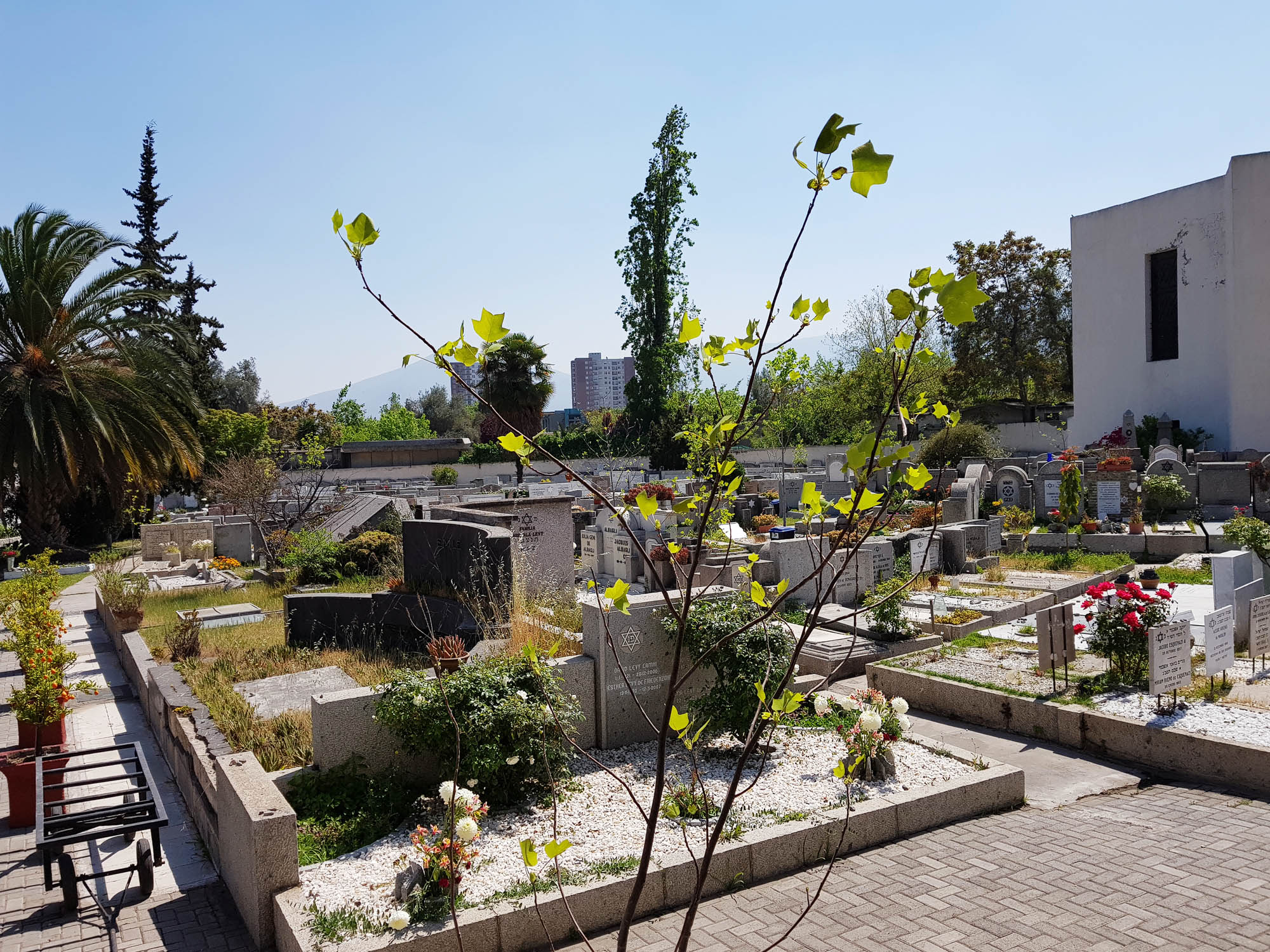 Sefardischer Friedhof in Santiago de Chile